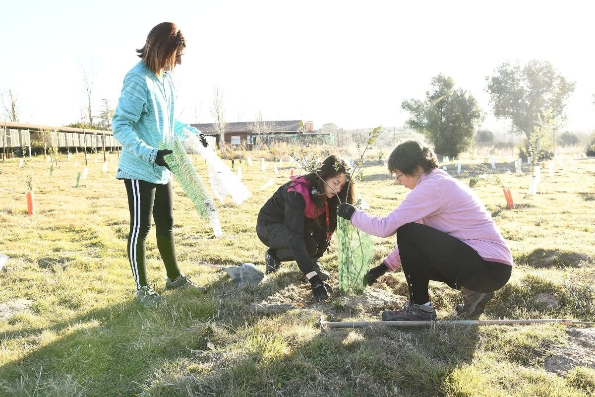 Gymkhana Ecológica - Actividad Empresa